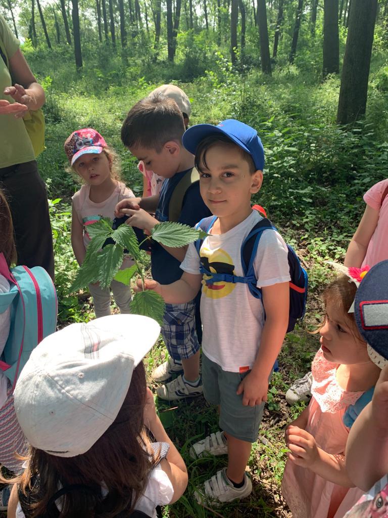 kindergarten teilzeit  kindergarten schritt für schritt
